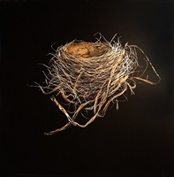 robin's nest, fall by mitchell lonas