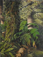 a small palm tree (guaricana) in the brazilian rainforest by william michaud von vevey