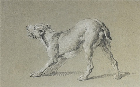 study of a dog by jean-baptiste oudry