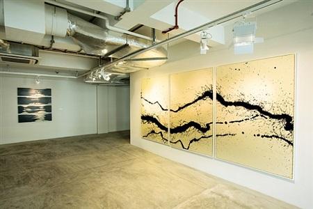 installation view - fabienne verdier 3 by fabienne verdier