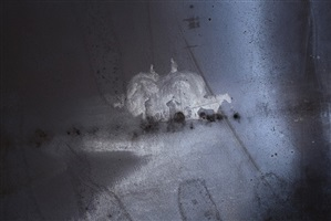 chemistry of light no.12 glass negative c.1890 12 x 10 in silver gelatine emulsion in decay by tessa traeger