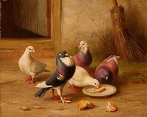 pigeons by edgar hunt