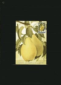 1966. achterdijk. pears of achterdijk (fondante de charneu of legipont) by donald evans