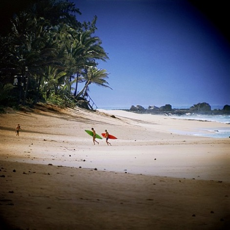 shark's cove, north shore (no. 102) by leroy grannis