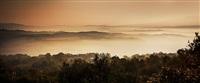 tuscan dreams by david drebin
