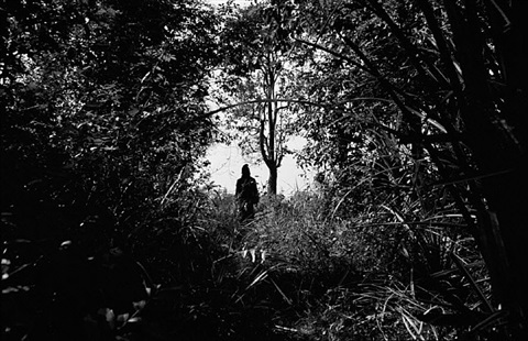 """teen at forest, nabua, 2008"" by apichatpong weerasethakul"