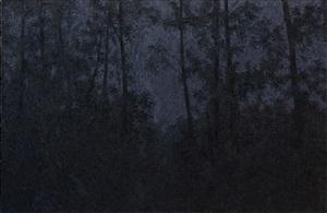shadow of light - 2 by pan jian
