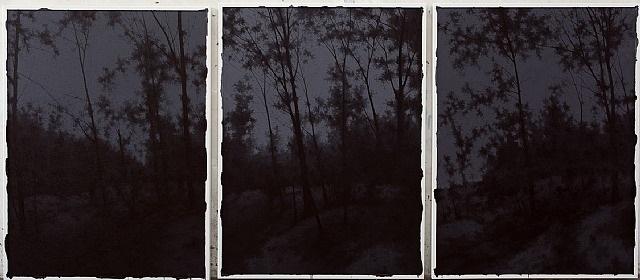 vanish is the center of dark nights by pan jian