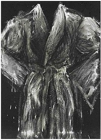the robe called winter by jim dine