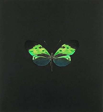 the souls on jacobs ladder take their flight (small green) by damien hirst