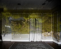 camera obscura: view of central park looking north, spring, 2010tent-camera image on ground: view of sea stacks looking north, ruby beach, olympic by abelardo morell