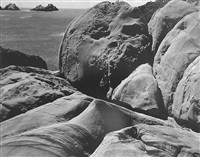 point lobos by edward weston