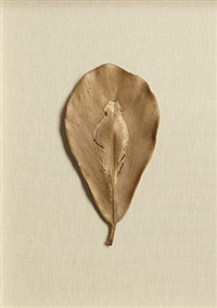 untitled by ana mendieta