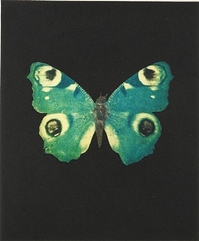 fate by damien hirst
