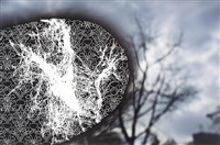fingerprint #9 by christopher russell