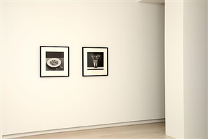 exhibition view by robert mapplethorpe