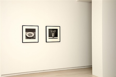 robert mapplethorpe works from 1980 to 1989 by robert mapplethorpe