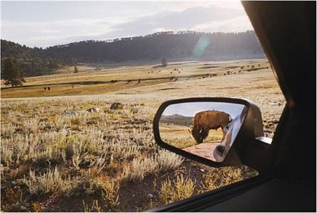rearview mirror by rebecca norris webb