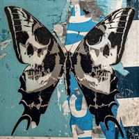 calvariam papilio (blue) by rich simmons