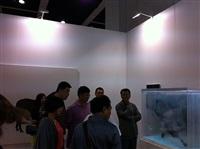 installation view art basel hong kong 2013 by xia xiaowan