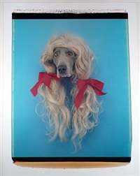 sally (dog in wig) by william wegman