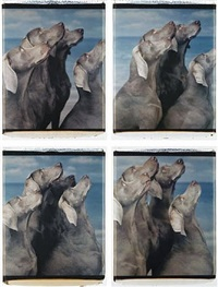 flock (suite of four panels) by william wegman