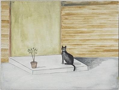 cat on black step by noel mckenna