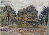 on the way to the kroller-muller (the hoge veluwe park) by keith mayerson
