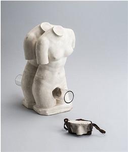 homology (woman) / homology (camera) by genpei akasegawa