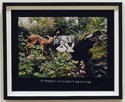 an exhibition in the forest for animals by duane michals