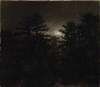 pines, dusk by dozier bell