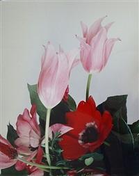 untitled (tokyo diary) by nobuyoshi araki