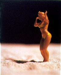 american beauty (ab37) by david levinthal