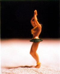 american beauties (ab12) by david levinthal