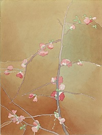 flowering quince by mark adams