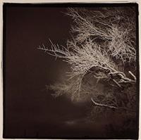from sky series by richard misrach