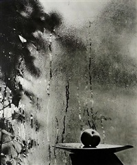 on the windowsill of my studio by josef sudek