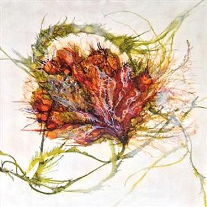 botanica 1 by alicia tormey