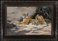 ruhende tiger by wilhelm friedrich kuhnert