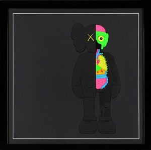 dissected companion by kaws
