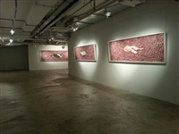 installation view - tian taiquan 4 by tian taiquan