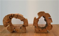 two rings by david nash