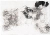 hair drawing - haarzeichnungen by rosemarie trockel