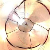 purring chamber vertigo (2013) by e.v. day
