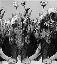untitled (poppy) by melanie willhide