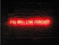 live forever by tim etchells