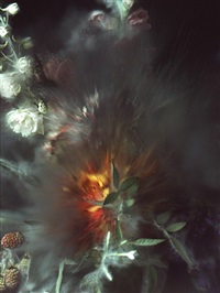 time after time - untitled no. 25 by ori gersht