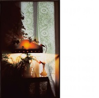 lamp, lily and lace by jack radetsky