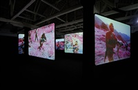 the enclave by richard mosse