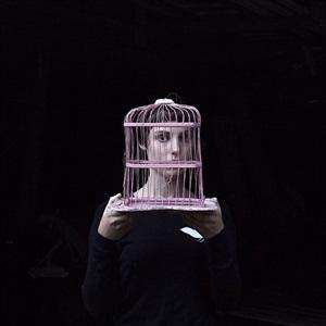 the birdcage, sadie, tennants harbor, maine by cig harvey